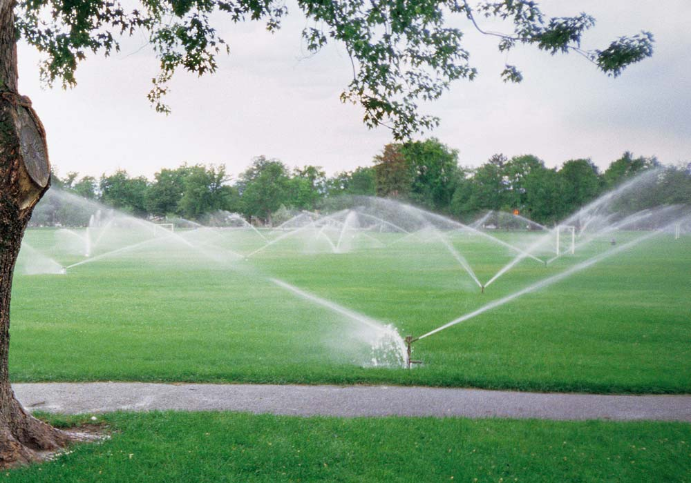 Lawn Irrigation Gallery 10 - Innovative Group, LLC